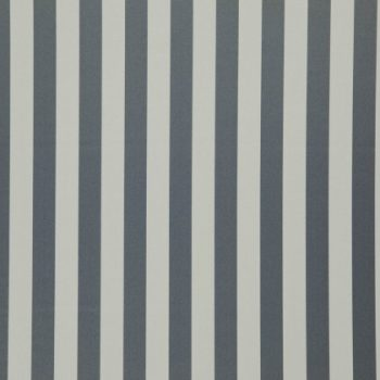 03-Shark, small stripe