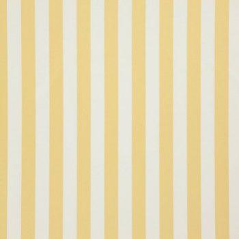 19-Honey, small stripe