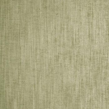 25-Eucalyptus