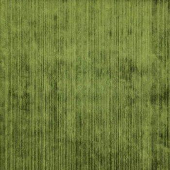 06-Pesto