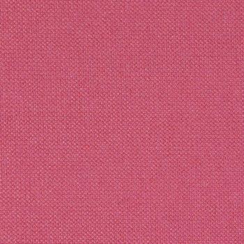 51-Hibiscus